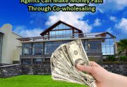 Agents Can Make Money Fast Through Co-wholesaling
